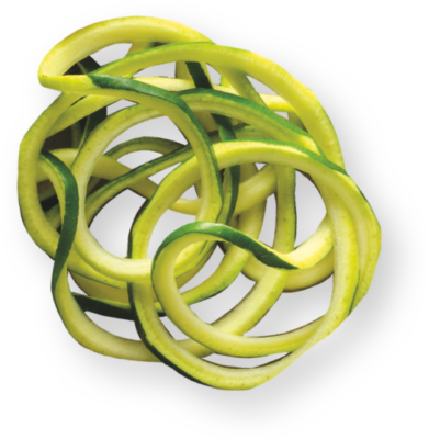 ball-zoodle